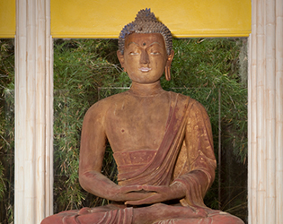 Buddha Statue at Jungle Gardens